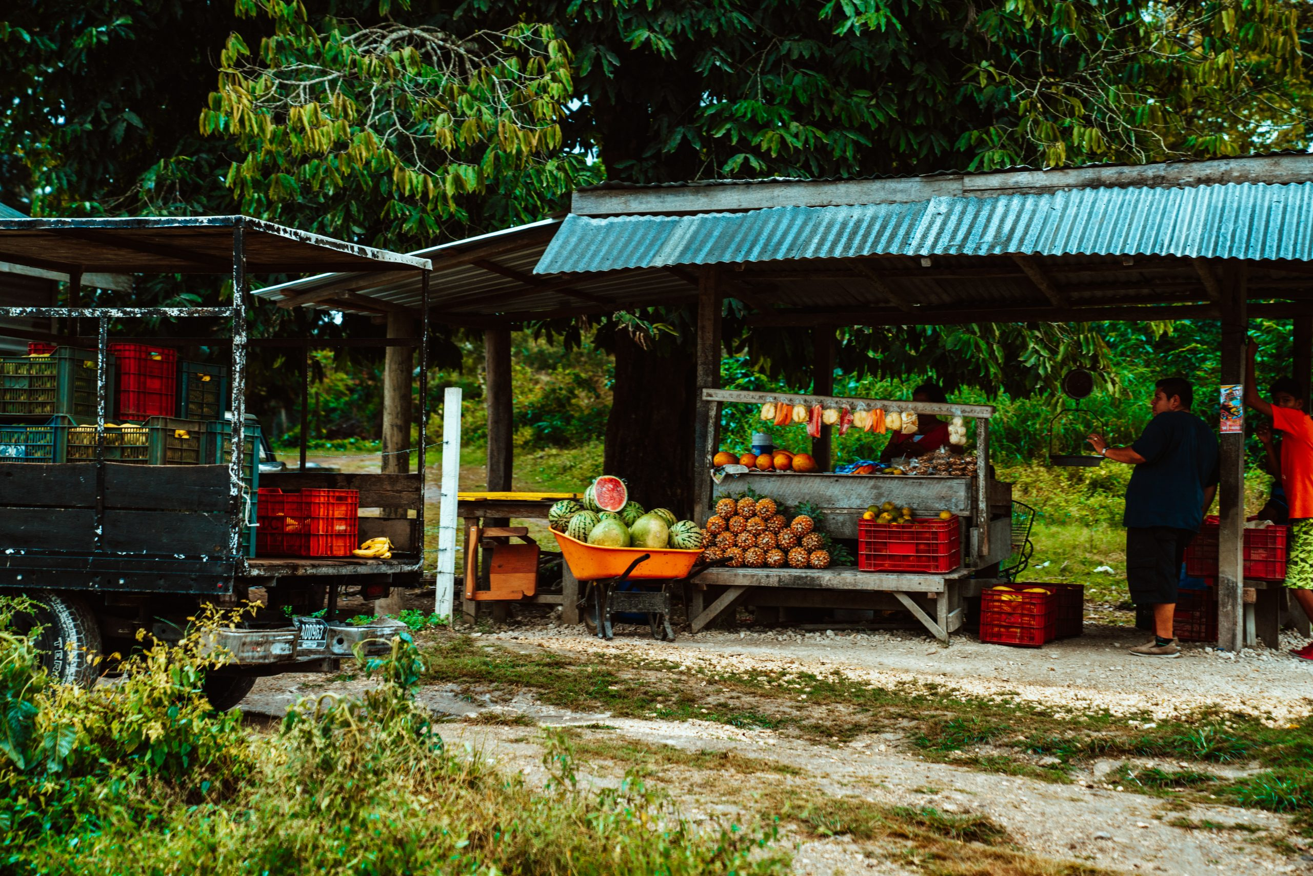 Local Farm Stand Photographed by Meritt Thomas sourced off of Unsplash